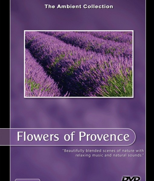 Flowers of Provence 1